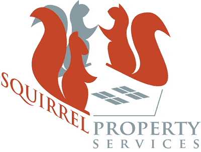 squirrel logo.png